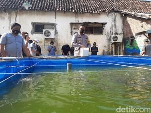 Kolam Ikan di Kantor Polisi Ini Bantu Warga Terdampak COVID-19
