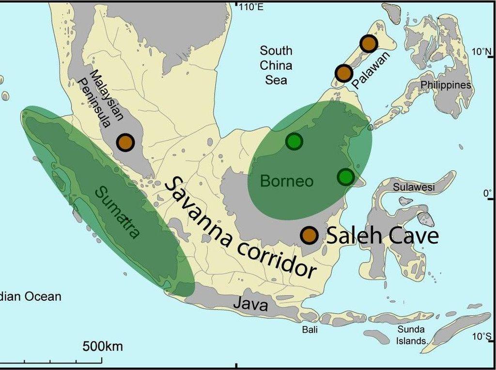 Jejak Peradaban Sundaland di Dasar Laut Natuna dan Jawa