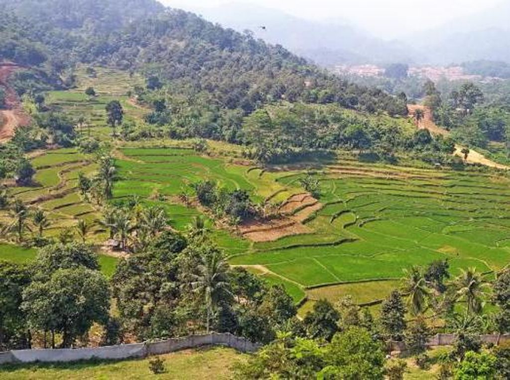 Segarnya Udara Pagi di Gunung Leutik Bogor