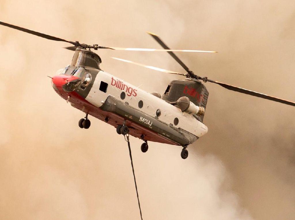 Dapat Tugas Tangani Kebakaran Hutan, Ini Spesifikasi Helikopter Baru BNPB
