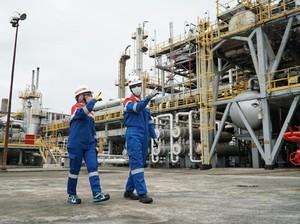 Pertamina Jamin Proses Tender Fasilitas Produksi Olefin Transparan