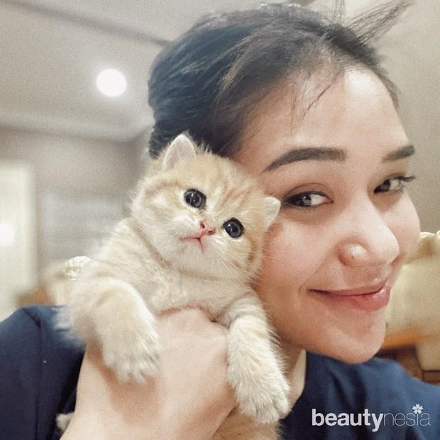 Potret manis saat Lula Lahfah mengabadikan momen bersama dengan kucing lucu kesayangannya.