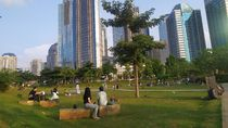 Berawal dari TikTok, Hutan Kota di GBK Kini Ramai Didatangi untuk Piknik