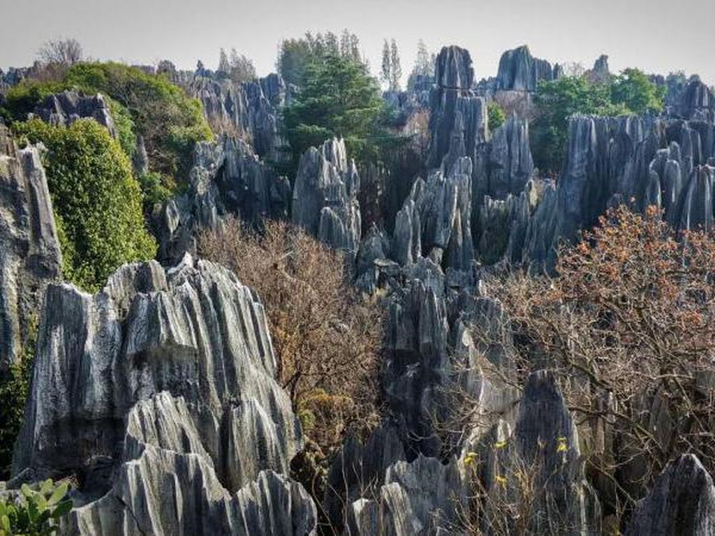 Hutan Batu di Kunming dan Legenda di Balik Keindahannya