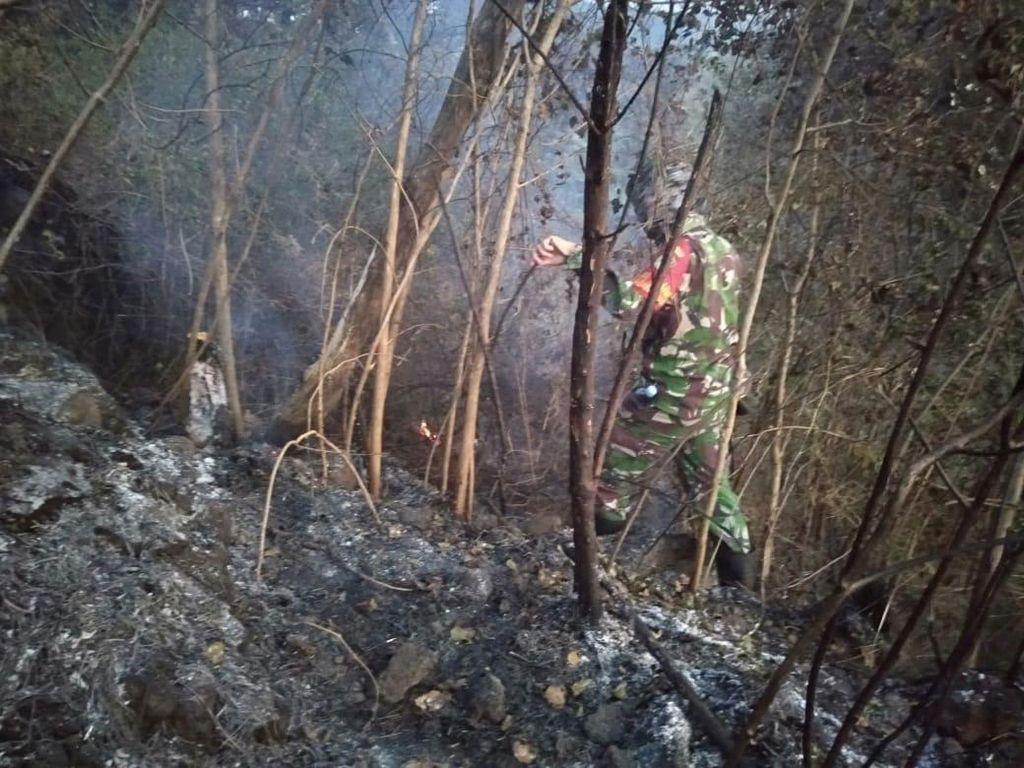 Ini Dugaan Penyebab Kebakaran Hutan di Gunung Ciremai