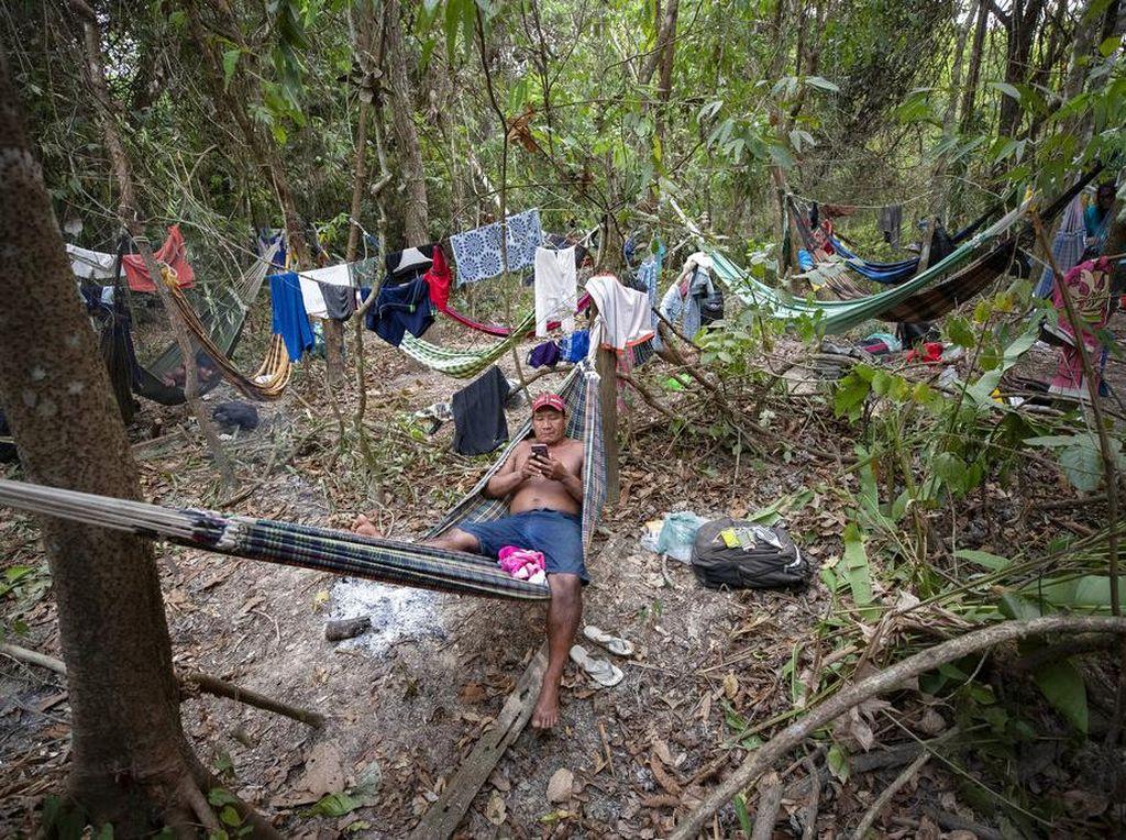 Suku Amazon Ancam Bakal Blokir Jalan Lagi di Brasil, Ada Apa?
