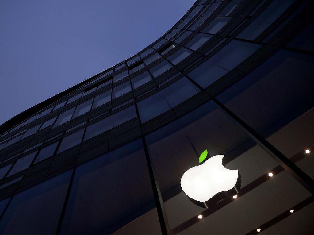 Diendorse Warren Buffett, Saham Apple Berotot