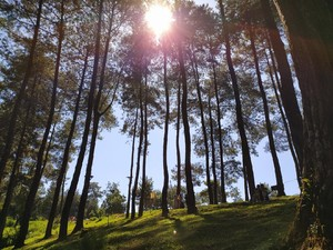 10 Tempat Wisata Ciamis, Banyak yang Baru Lho!
