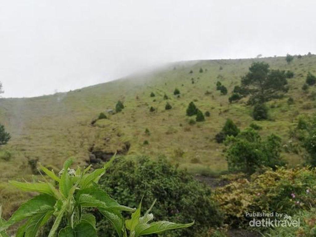 Gunung Guntur yang Memikat