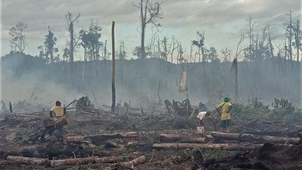 Warga dan personel Manggala Aqni melakukan pemadaman api yang membakar lahan gambut di Kelurahan Tinengi, Kecamatan Tinondo, Kolaka Timur, Sulawesi Tenggara, Rabu (19/8/2020). Kebakaran hutan dan lahan (Karhutla) gambut terjadi di wilayah itu menghanguskan sekitar dua hektare lahan dan belum berhasil dipadamkan akibat cuaca panas dan angin kencang. ANTARA FOTO/ManggalaAqni/JJ/foc.