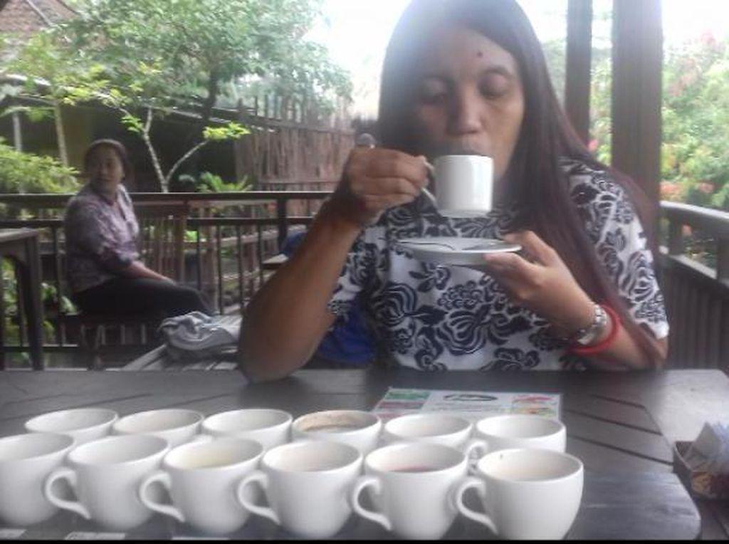 Menyeduh Kopi Luwak Berbalut Kabut di Tampaksiring, Bali