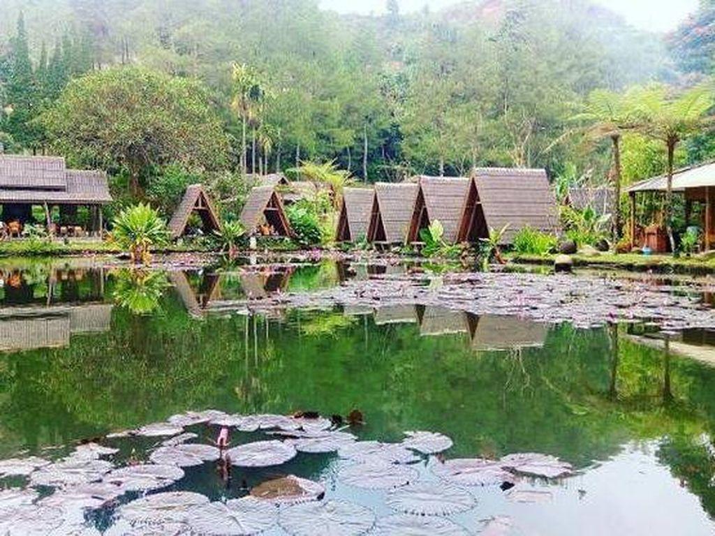 Sedep Pisan! Makan Bareng Keluarga di 5 Resto Konsep Alam di Lembang