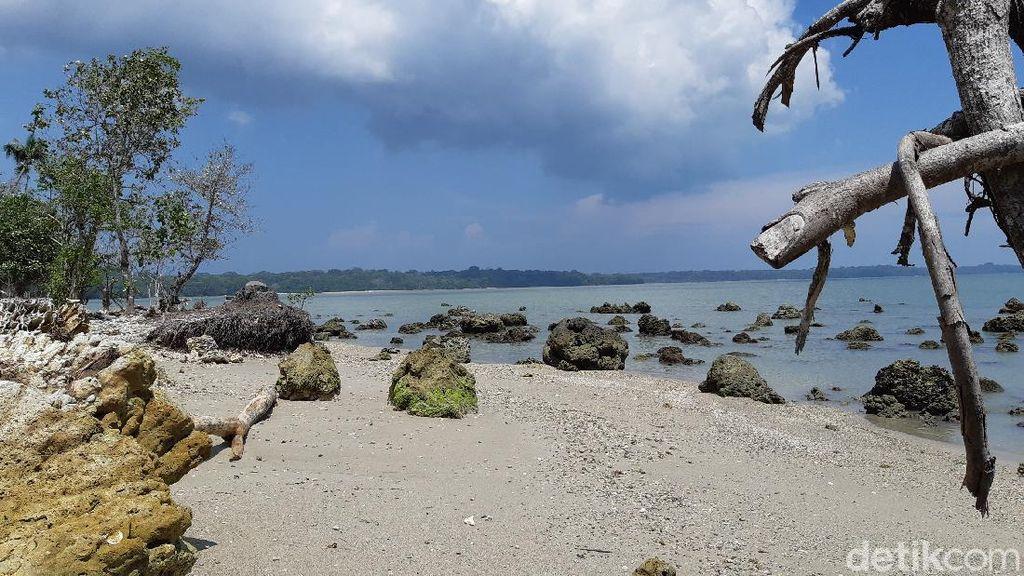 Traveler, Ujung Kulon Menantimu