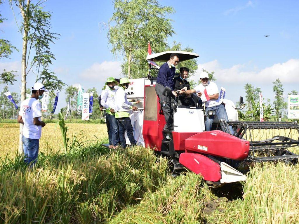 Panen Raya di Lombok Tengah, Mentan Beri Bantuan Pertanian Rp 120 M