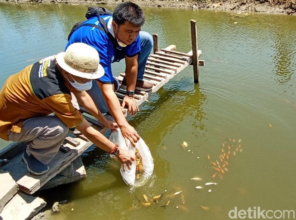 Saluran Irigasi Ini Disulap Jadi Kolam Ikan Konsep Edutechnopreneur