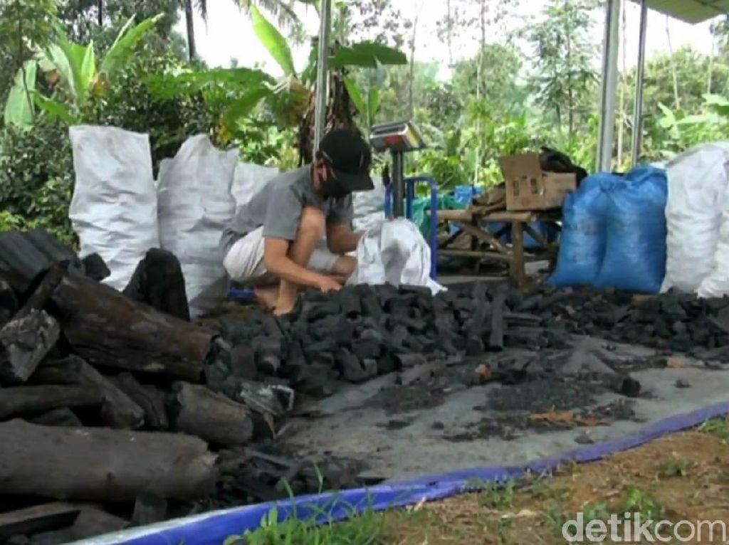 Di Tengah Pandemi, Eksportir Arang di Subang Raup Untung Gede