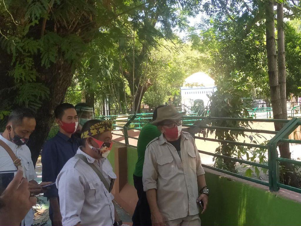 Ini Kata DPRD Soal Dibukanya Kembali Kebun Binatang Surabaya