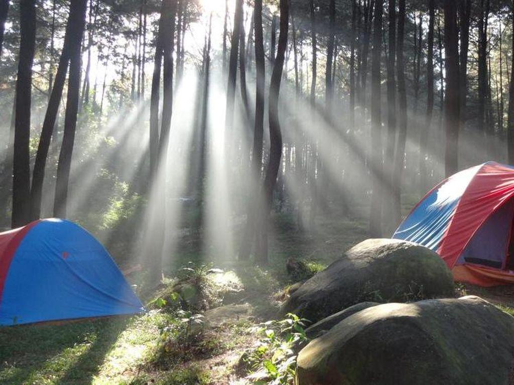 Ini Rekomendasi 5 Tempat Camping Dekat Jakarta