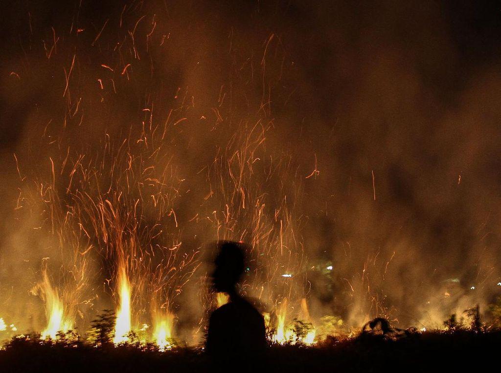 Waspada! Lahan di Riau Kembali Membara