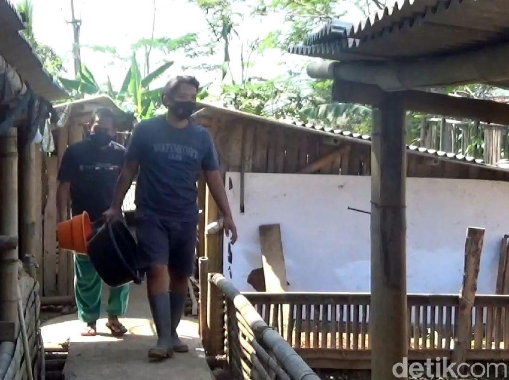 Kisah Ricky Polisi di Sukabumi Beternak Bebek-Bantu Ekonomi Warga
