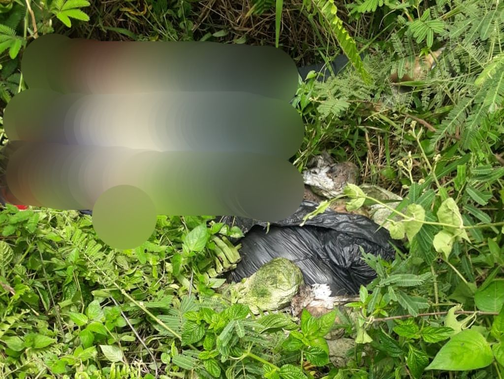 Mayat Wanita dengan Leher Tergorok Ditemukan dalam Parit, Diduga Dibunuh