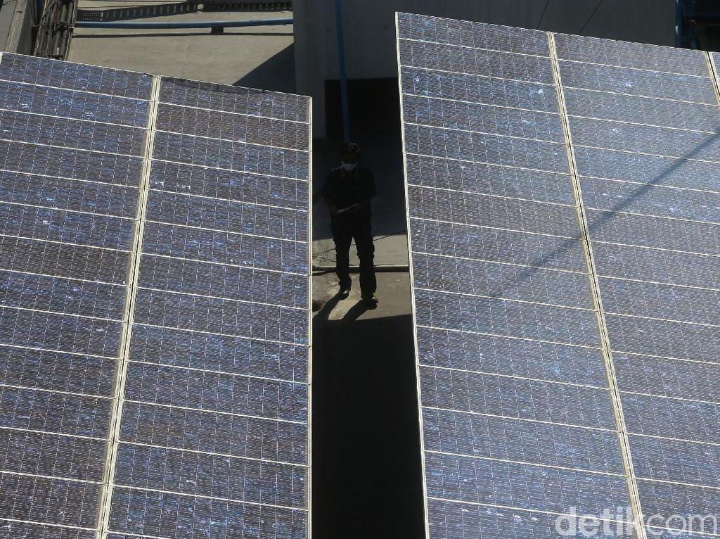 Ada PLTS Terbesar di Jateng, Bisa Hasilkan Listrik 4 GWh per Tahun