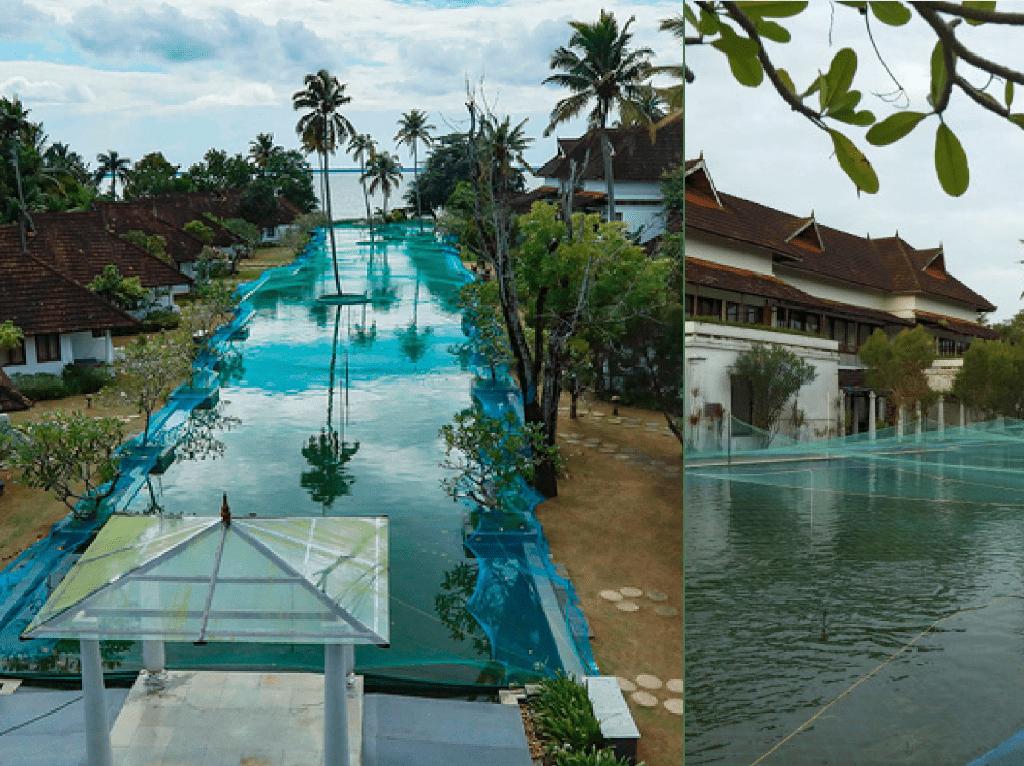 Pandemi Corona, Resort Mewah Ubah Kolam Renang Jadi Kolam Ikan