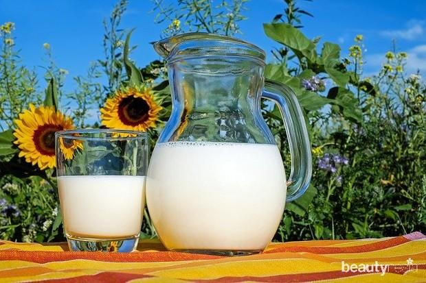 Makanan Mengandung Susu