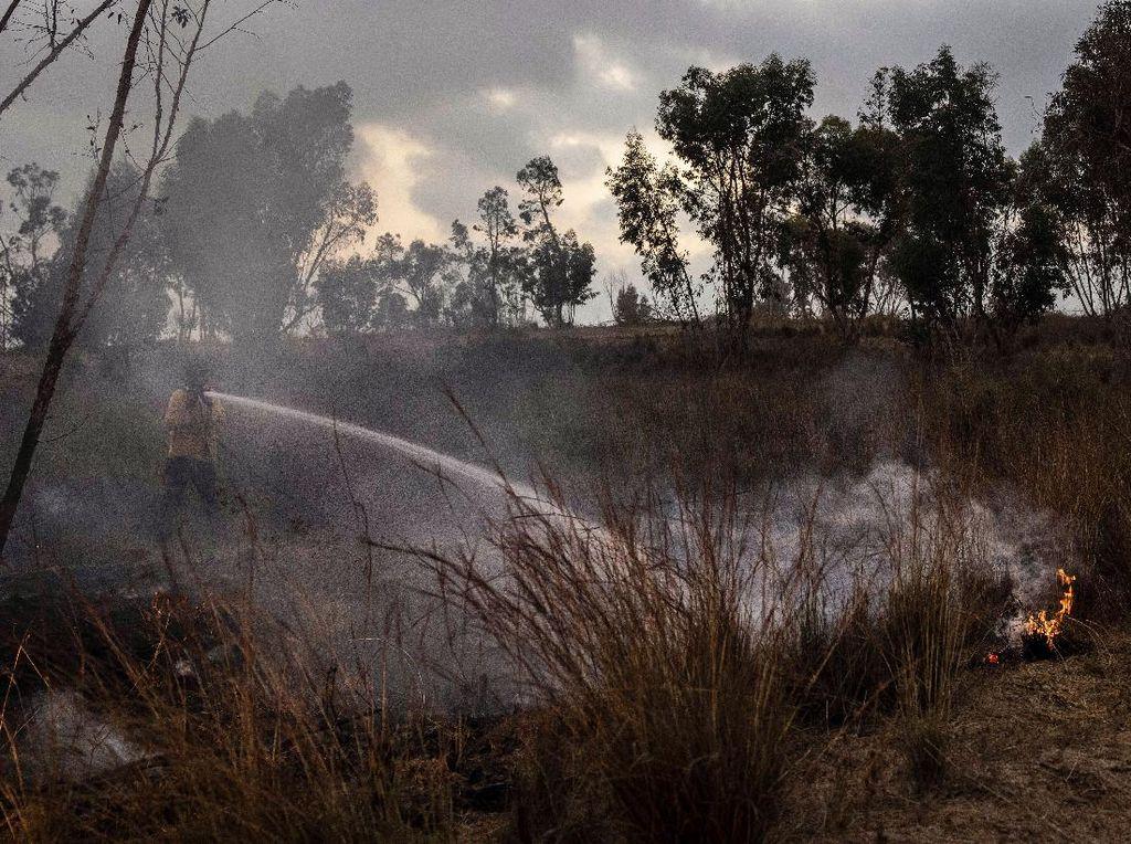 Hamas dan Israel Sepakat Setop Saling Serang di Perbatasan Gaza