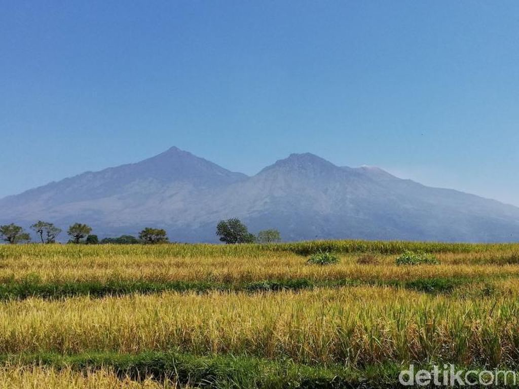 Gunung Arjuno-Welirang Dibuka 5 September 2020