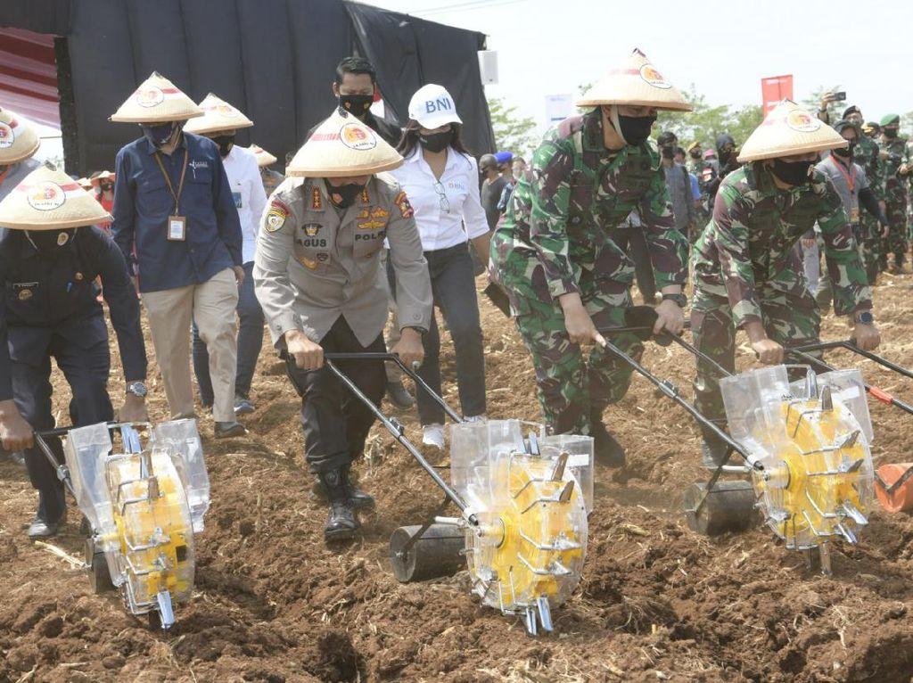 Cegah Krisis Pangan, TNI-Polri Tanam Jagung di Lahan 350 Hektare