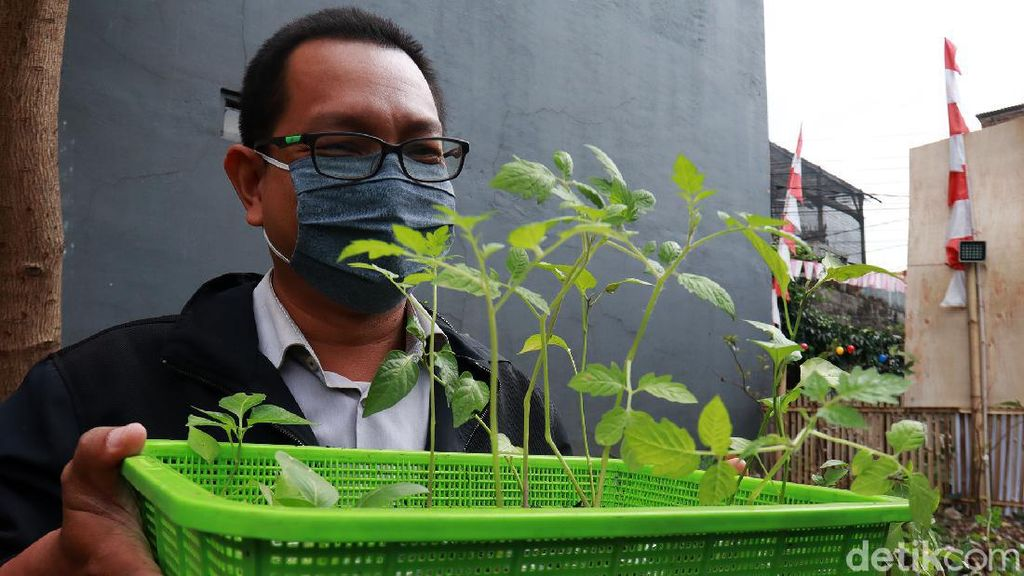 Yuk! Belajar Berkebun di Teras Hijau Project Bandung