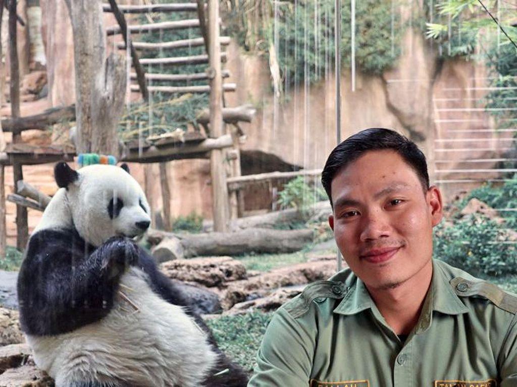 Cerita Falahuddin Merawat Ikon China di Indonesia