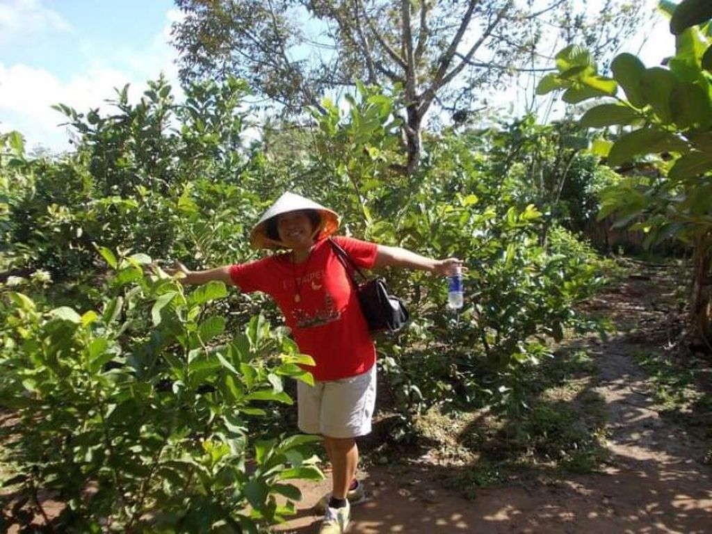 Potret Kebun Buah di Pedalaman Can Tho Vietnam