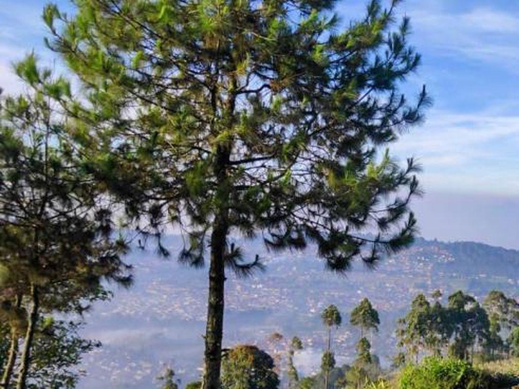 Wisata Gunung Putri, Keindahan bak Negeri di Atas Awan