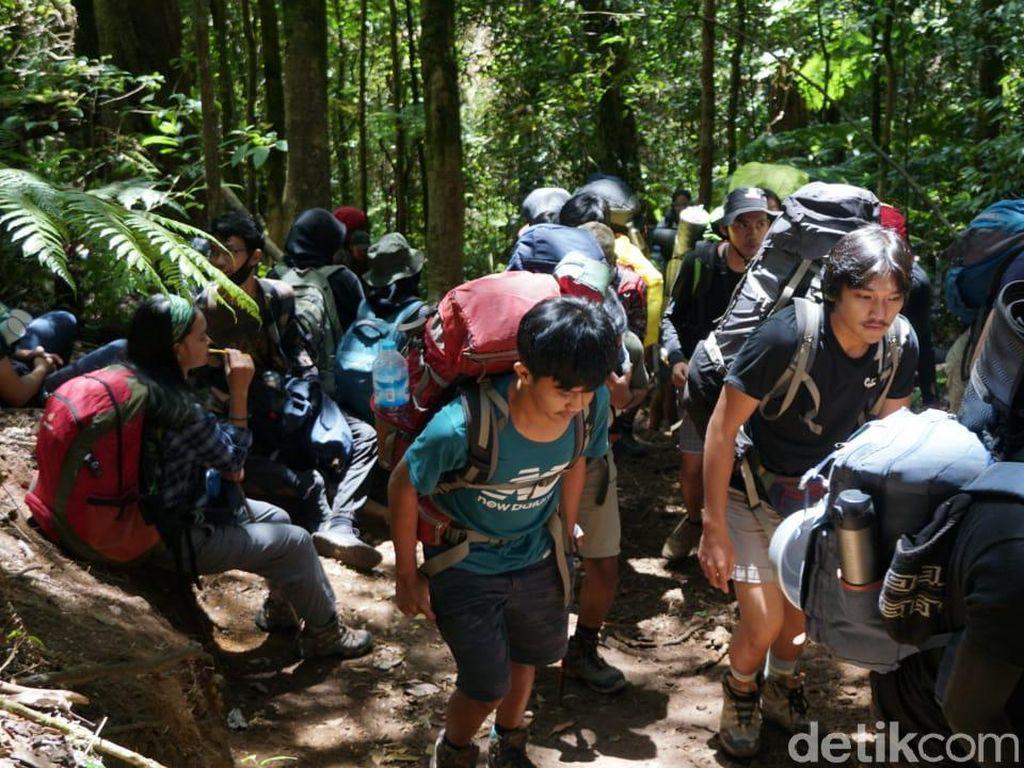 Gunung Gede Kayak Pasar, Tanda TN Kesulitan Adaptasi Saat Pandemi?