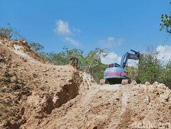 Pembangunan Pulau Rinca TN Komodo Jadi Jurassic Park Dimulai