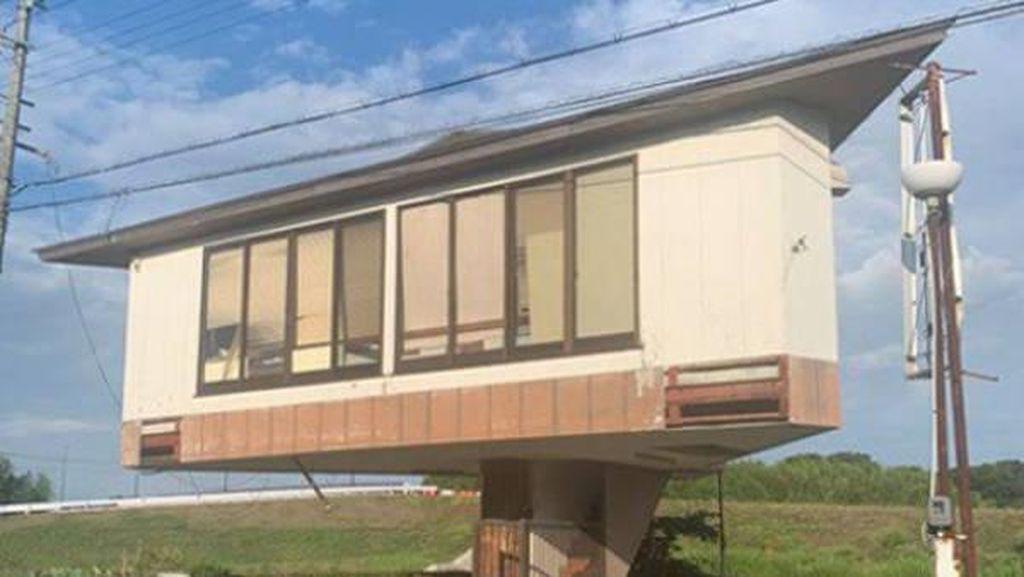 Potret Rumah Jamur Viral Bikin Melongo, Dibangun di Atas Tangga Kecil Sempit
