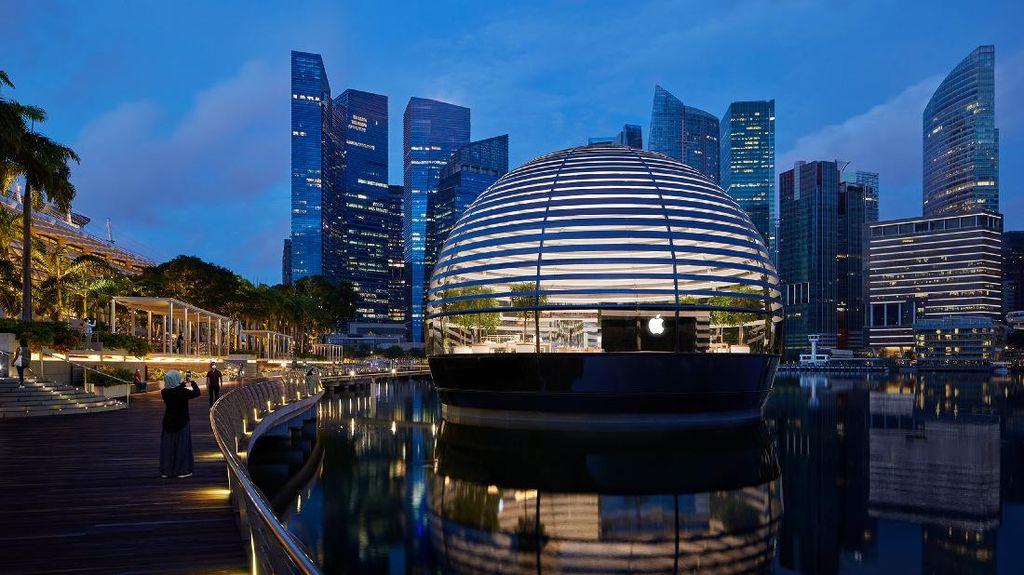 Apple Marina Bay Sands Dibuka Kamis Ini, Yuk Intip Tampilan Dalamnya