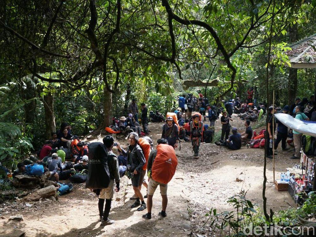 Sempat Ramai Pendaki, Ini Isi Surat Penutupan Gunung Gede Pangrango