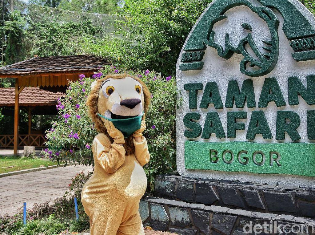 Pengunjung Taman Safari Tak Seramai Dahulu