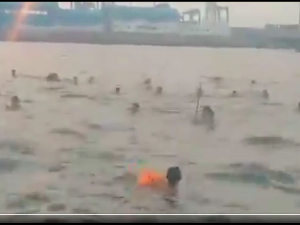 Viral Tawuran di Laut Jakarta Utara, Polisi Selidiki Pelaku