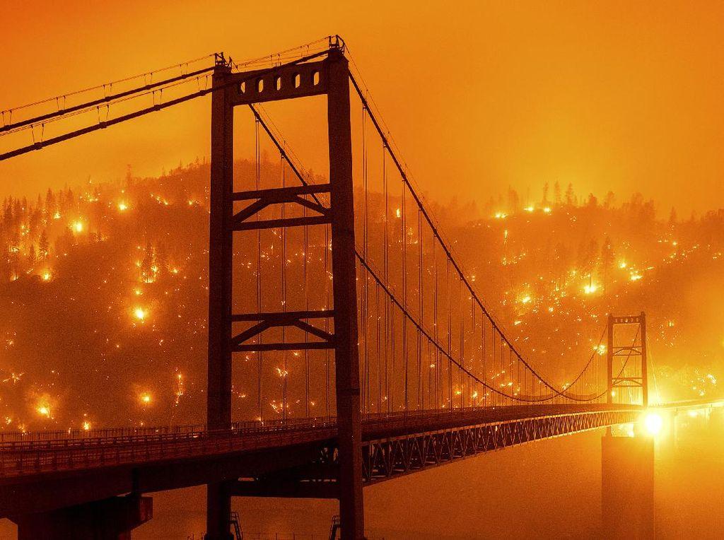 16 Orang Tewas dan 500 Ribu Dievakuasi Akibat Kebakaran Hutan di California