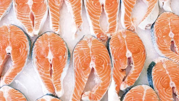 salmon beku