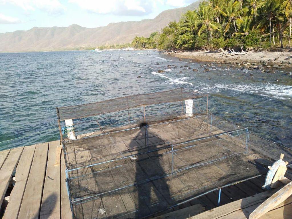 Inkoppas Siap Bantu Kembangkan Potensi Perikanan di Lembata