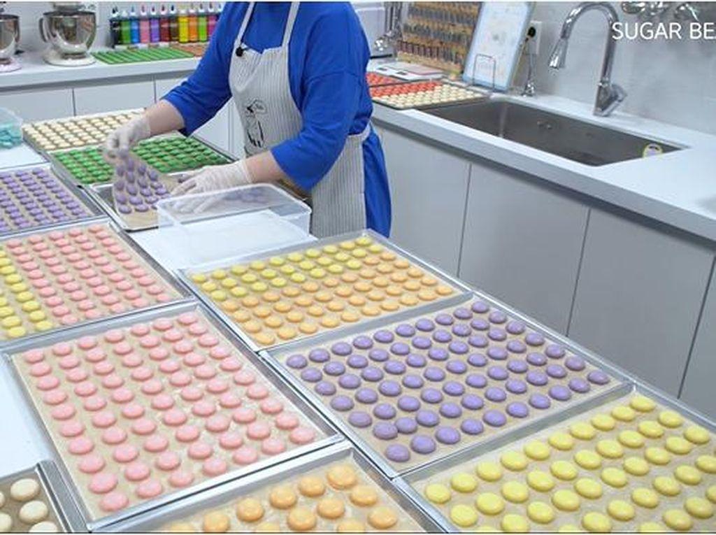 Keren! Dalam 3 Jam Baker Ini Berhasil Bikin 1.600 Macaron Sendirian
