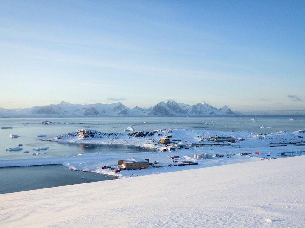 Virus Corona Sudah Sampai di Antartika!