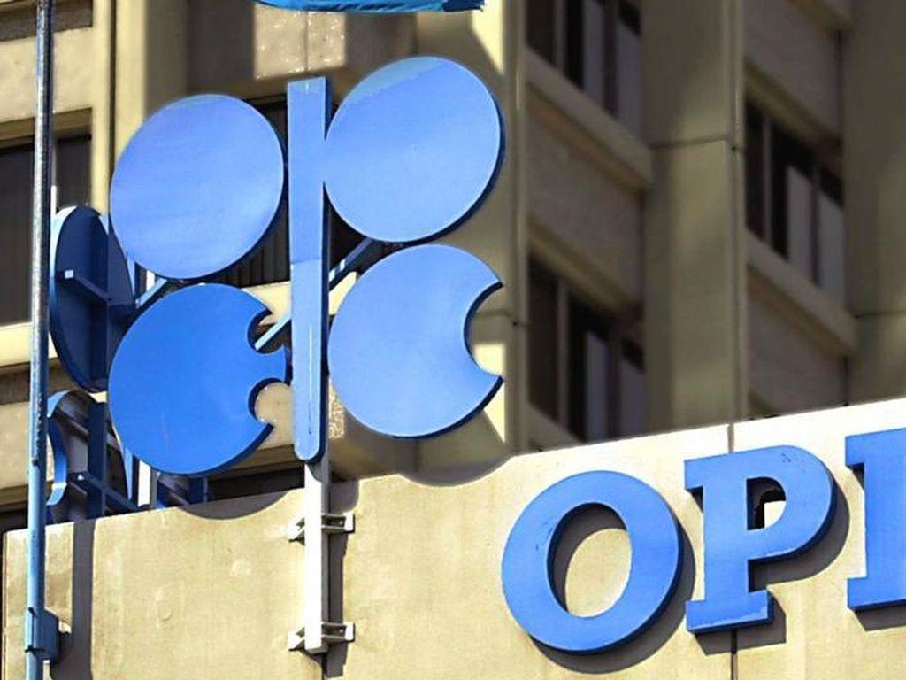 OPEC Perpanjang Pengurangan Produksi, Harga Minyak Melonjak