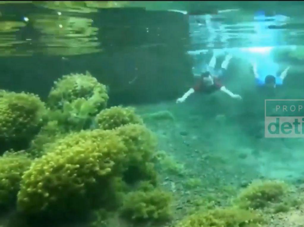 Wisata Mata Air Cimincul yang Bening di Desa Pasanggrahan