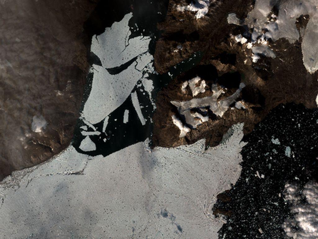 Lapisan Es di Greenland Terlepas dan Terpecah Menjadi Kecil-kecil